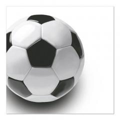 50 Servietten, 3-lagig 1/4-Falz 33 cm x 33 cm -Soccer -