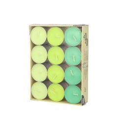 24 Teelichter Ø 38 mm 16 mm -Kiwi, Kiwigrün, Maigrün-