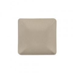 50 Fingerfood - Teller, Zuckerrohr pure eckig 6,5 cm x 6,5 cm natur